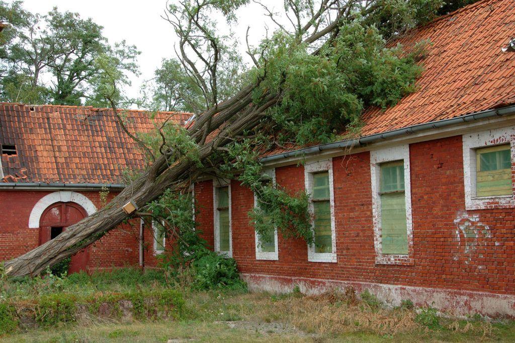 Sturmschaden - auf das richtige Vorgehen kommt es an