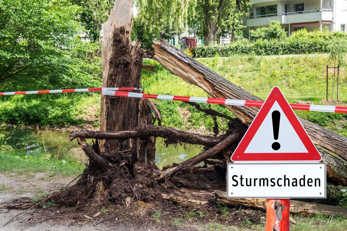 Sturmschaden Versicherung - Ihr Recht